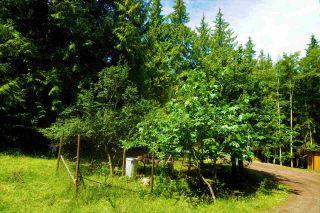 Photo 21: 317 MARINERS Way: Mayne Island Land for sale (Islands-Van. & Gulf)  : MLS®# R2474878