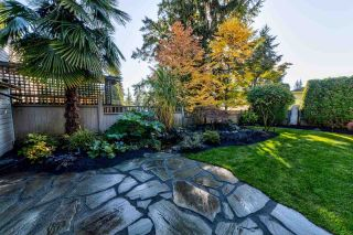 Photo 19: 4097 VIOLET Street in North Vancouver: Indian River House for sale : MLS®# R2437219