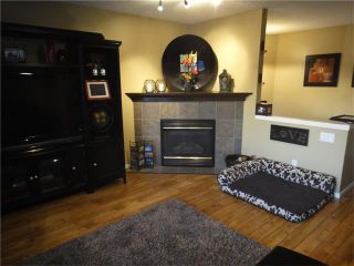 Photo 20: 266 BRIDLEWOOD Circle SW in Calgary: Bridlewood House for sale : MLS®# C4031965