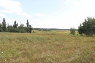 Photo 4: Twp 510 RR 33: Rural Leduc County Rural Land/Vacant Lot for sale : MLS®# E4256128