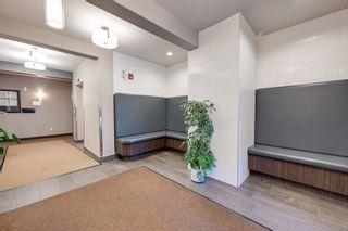 Photo 27: 243 308 AMBLESIDE Link in Edmonton: Zone 56 Condo for sale : MLS®# E4260650