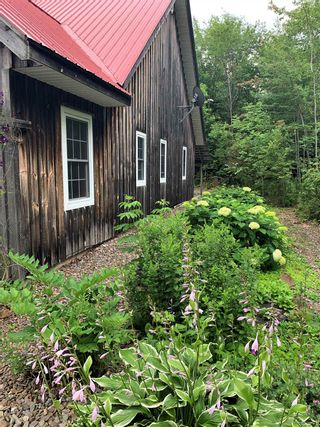 Photo 29: 3488 Brow of Mountain Road in West Black Rock: 404-Kings County Residential for sale (Annapolis Valley)  : MLS®# 202118967