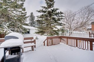 Photo 34: 6139 Buckthorn Road NW in Calgary: Thorncliffe Detached for sale : MLS®# A1070955