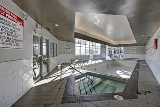 Photo 29: 2031 Edenwold Heights NW in Calgary: Edgemont Apartment for sale : MLS®# A1066741