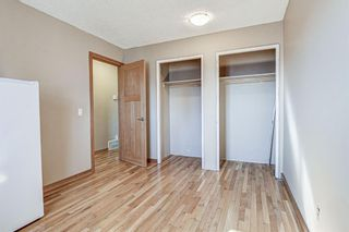 Photo 19: 126 Dovercliffe Way SE in Calgary: Dover Detached for sale : MLS®# A1082276