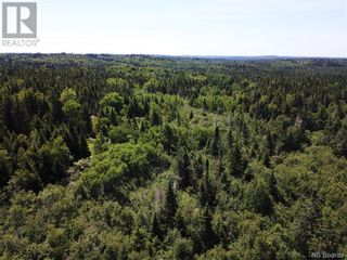 Photo 12: 100 Mount Pleasant Road in St. George: Vacant Land for sale : MLS®# NB059440