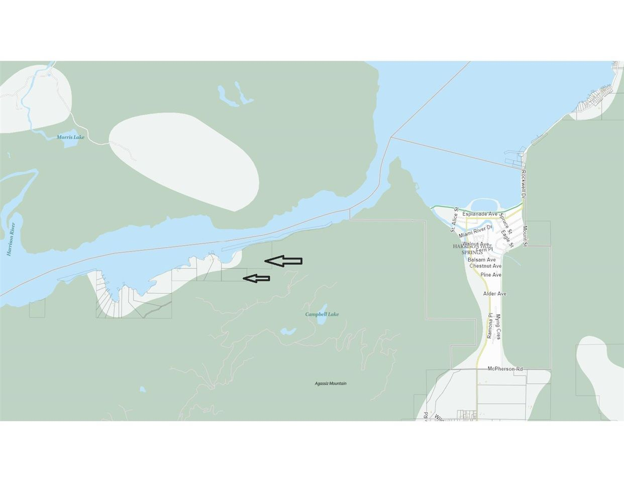 Main Photo: PORTION N 1/2 SUB 13 Common: Harrison Hot Springs Land for sale : MLS®# R2576486