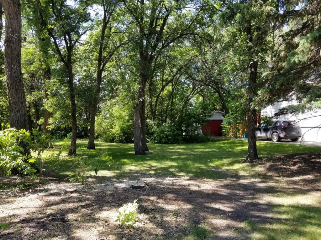 Main Photo: 0 14th Street NW in Portage la Prairie: Vacant Land for sale : MLS®# 202025147