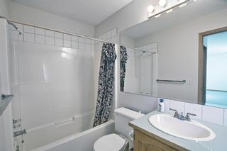 Photo 21: 351 Applewood Drive SE in Calgary: Applewood Park Detached for sale : MLS®# A1094539