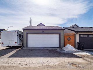 Photo 29: 151 CRANFORD Crescent SE in Calgary: Cranston Detached for sale : MLS®# A1089730