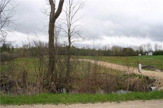 Photo 4: 176 St. Arnaud Street in Grey Highlands: Rural Grey Highlands Property for sale : MLS®# X3785109