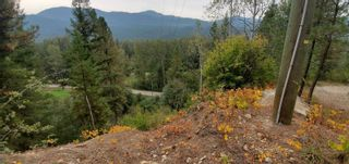 Photo 20: 789 Shuswap River Drive, in Lumby: House for sale : MLS®# 10240114
