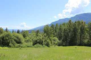 Photo 4: 37 2481 Squilax Anglemont Road in Lee Creek: North Shuswap Land Only for sale (Shuswap)  : MLS®# 10094382