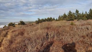 Photo 5: Lot 8 Youngs Road in East Green Harbour: 407-Shelburne County Vacant Land for sale (South Shore)  : MLS®# 202022907