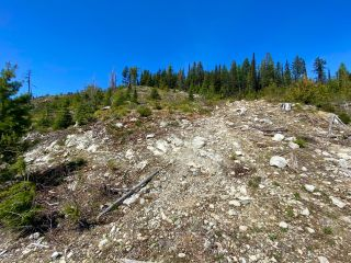 Photo 58: DL 1752 GIVEOUT CREEK FOREST SERVICE ROAD in Nelson: Vacant Land for sale : MLS®# 2458886