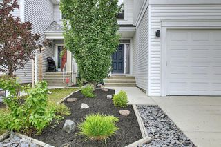 Photo 3: 1484 Copperfield Boulevard SE in Calgary: Copperfield Detached for sale : MLS®# A1137826
