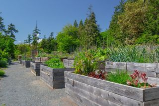Photo 20: 308 79 W Gorge Rd in : SW Gorge Condo for sale (Saanich West)  : MLS®# 885912