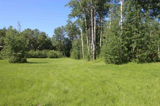 Photo 5: 568 Beach Road: Rural Wetaskiwin County Rural Land/Vacant Lot for sale : MLS®# E4251590
