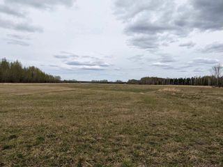 Photo 4: RR 260 Twp 62: Rural Westlock County Rural Land/Vacant Lot for sale : MLS®# E4224350