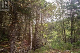 Photo 11: Lots Brooklyn RD in Midgic: Vacant Land for sale : MLS®# M136510