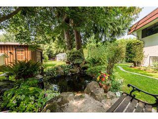 Photo 4: 8421 SULLIVAN Place in Delta: Nordel House for sale (N. Delta)  : MLS®# R2297395
