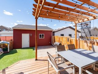 Photo 27: 359 AUBURN CREST Way SE in Calgary: Auburn Bay Detached for sale : MLS®# C4241406