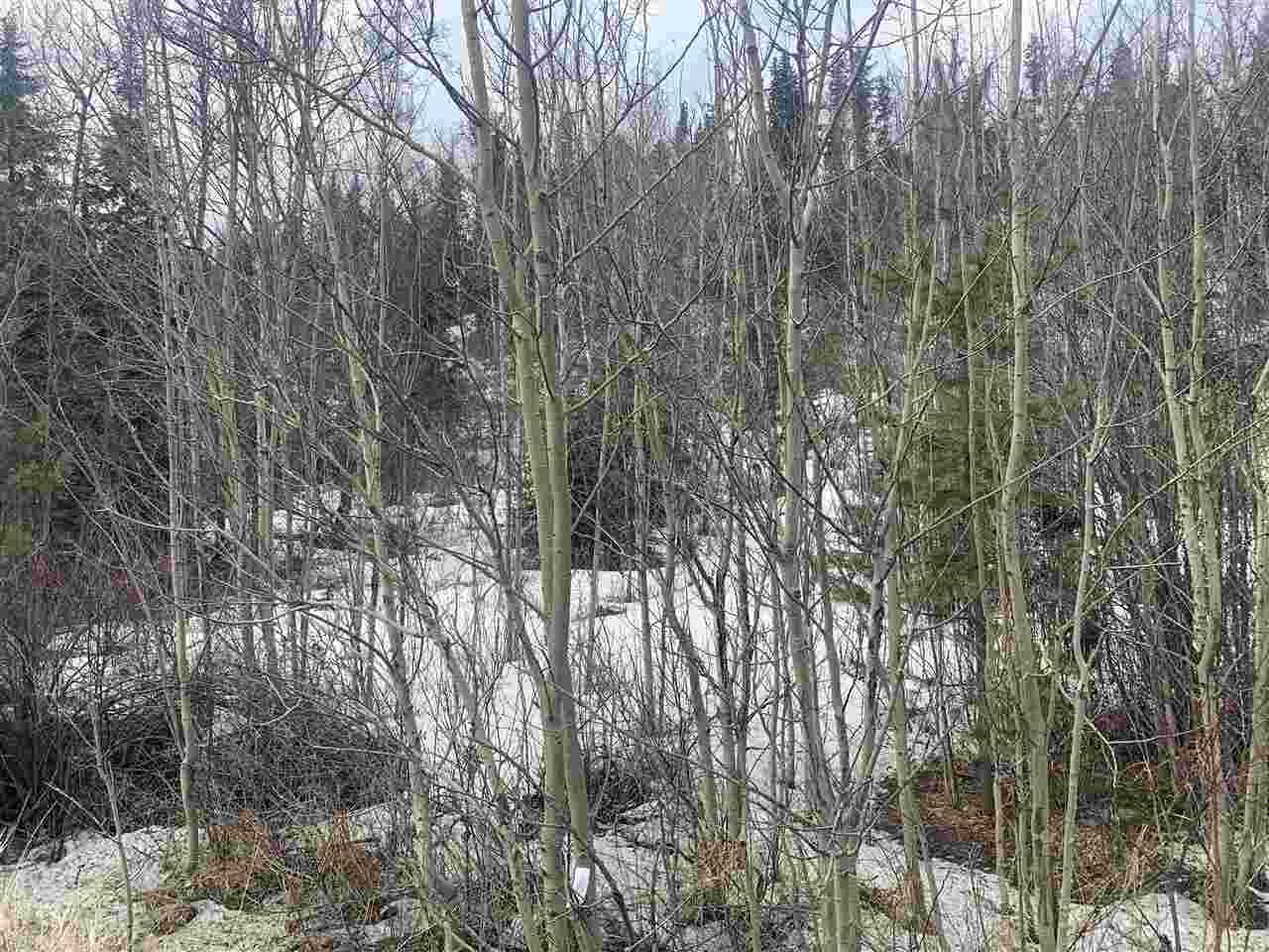 Main Photo: 3079 HART Highway in Prince George: Hart Highway Land for sale (PG City North (Zone 73))  : MLS®# R2555296
