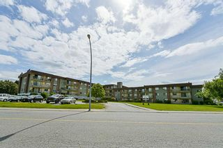 Photo 1: 322 45598 McIntosh Drive in Chilliwack: Chilliwack W Young-Well Condo for sale : MLS®# R2273089