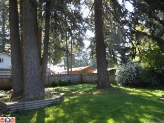 Photo 4: 2300 153RD Street in Surrey: King George Corridor House for sale (South Surrey White Rock)  : MLS®# F1213448