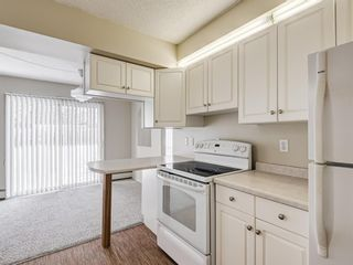 Photo 16: 101 6919 Elbow Drive SW in Calgary: Kelvin Grove Apartment for sale : MLS®# A1052867