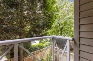 "Photo 14: 225 528 ROCHESTER Avenue in Coquitlam: Coquitlam West Condo for sale in ""The Ave"" : MLS®# R2475991"