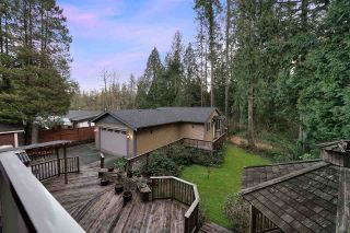 Photo 19: 23376 DOGWOOD AVENUE in Maple Ridge: East Central House for sale : MLS®# R2443613