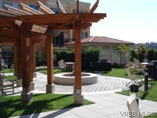 Photo 7: 210 1620 McKenzie Ave in VICTORIA: SE Lambrick Park Condo for sale (Saanich East)  : MLS®# 511152