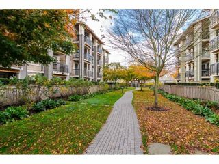 "Photo 24: 408 21009 56 Avenue in Langley: Salmon River Condo for sale in ""Cornerstone"" : MLS®# R2534163"