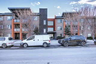 Photo 32: 119 2727 28 Avenue SE in Calgary: Dover Apartment for sale : MLS®# A1077846