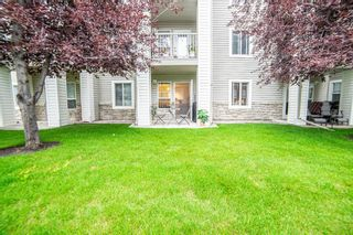 Photo 18: 3136 6818 Pinecliff Grove NE in Calgary: Pineridge Apartment for sale : MLS®# A1132445