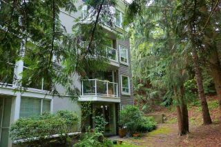 Photo 5: 203 8430 JELLICOE STREET in Vancouver: South Marine Condo for sale (Vancouver East)  : MLS®# R2572343