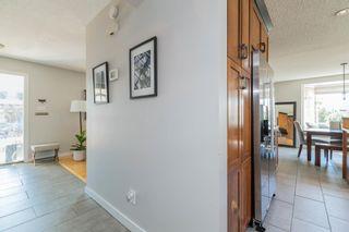 Photo 15: 3504 117 Street in Edmonton: Zone 16 House for sale : MLS®# E4252614