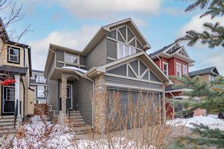 Photo 41: 336 SILVERADO PLAINS Circle SW in Calgary: Silverado Detached for sale : MLS®# A1061010