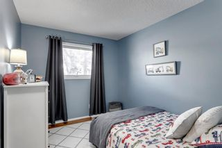 Photo 11: 266 Banister Drive: Okotoks Residential for sale : MLS®# A1070083