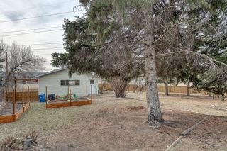 Photo 5: 10 Stanley Crescent SW in Calgary: Elboya Detached for sale : MLS®# A1089990