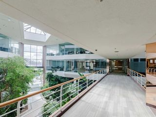 Photo 14: 1550 Enterprise Road in Mississauga: Northeast Property for sale : MLS®# W5161295