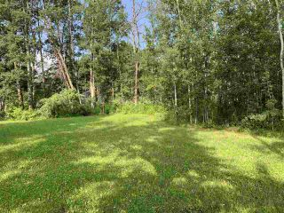Photo 3: #105 54500 Lac Ste Anne Tr.: Rural Sturgeon County Rural Land/Vacant Lot for sale : MLS®# E4227654