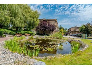 """Photo 20: 20 16655 64 Avenue in Surrey: Cloverdale BC Townhouse for sale in """"Ridgewoods"""" (Cloverdale)  : MLS®# R2482144"""