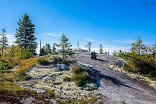 Photo 14: 2014 Myra Road in Porters Lake: 31-Lawrencetown, Lake Echo, Porters Lake Vacant Land for sale (Halifax-Dartmouth)  : MLS®# 202125407