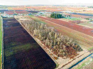 Photo 6: 3762 - 3792 176 Street in Surrey: Serpentine Land for sale (Cloverdale)  : MLS®# R2532600