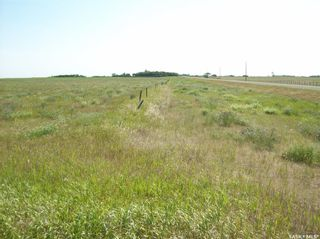 Photo 16: Eagle Creek Acreage 80 Acres in Asquith: Lot/Land for sale : MLS®# SK863384