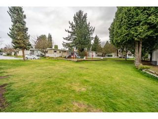 """Photo 30: 186 7790 KING GEORGE Boulevard in Surrey: East Newton Manufactured Home for sale in """"Crispen Bays"""" : MLS®# R2560382"""