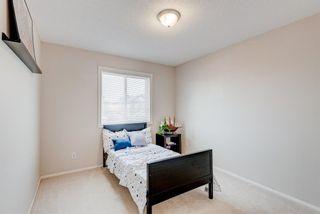 Photo 17: 137 Saddletree Close NE in Calgary: Saddle Ridge Detached for sale : MLS®# A1091689