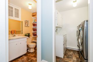 Photo 28: 66 Chestnut Avenue in Wolfville: 404-Kings County Residential for sale (Annapolis Valley)  : MLS®# 202103928